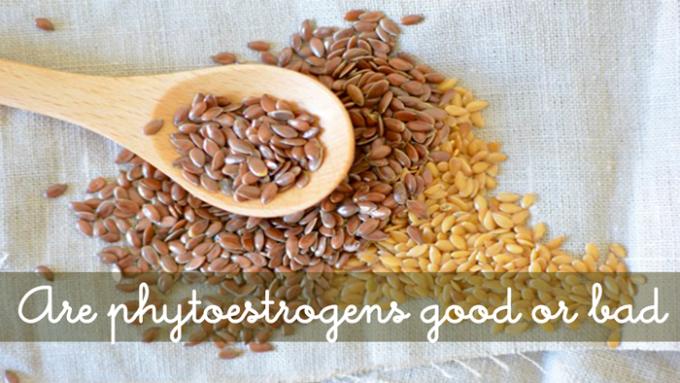 Phytoestrogen-Image